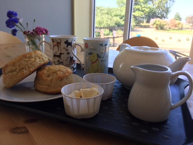 cream tea in the on site tearoom